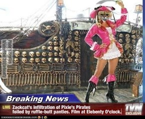 Breaking News - Zackcat's infiltration of Pixie's Pirates  foiled by ruffle-butt panties. Film at Elebenty O'clock.