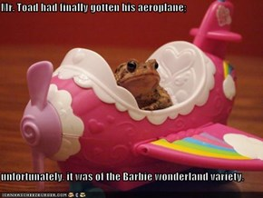 Mr. Toad had finally gotten his aeroplane;  unfortunately. it was of the Barbie wonderland variety.