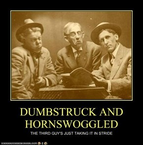 DUMBSTRUCK AND HORNSWOGGLED
