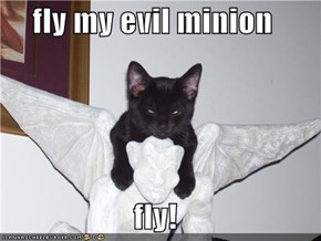 fly my evil minion   fly!
