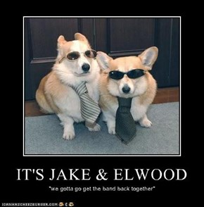 IT'S JAKE & ELWOOD