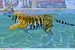 Acting Like Animals: Adult Swim Day is My Favorite!