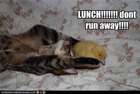 Come on, lunch!