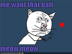 me want that ball    meow meow