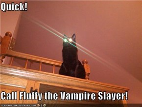 Quick!  Call Fluffy the Vampire Slayer!