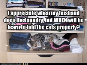 I appreciate when my husband does the laundry