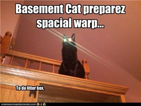 Basement Cat preparez spacial warp...