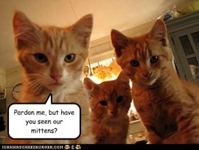 Pardon me, but have you seen our mittens?