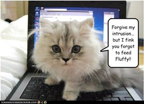 Forgive my intrusion... but I fink you forgot to feed Fluffy!!