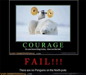 Penguins on the North-Pole