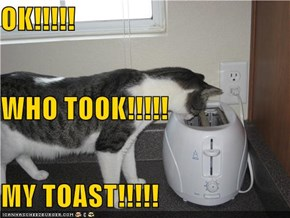 OK!!!!! WHO TOOK!!!!! MY TOAST!!!!!