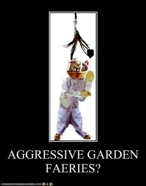 AGGRESSIVE GARDEN FAERIES?