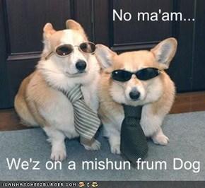 No ma'am...   We'z on a mishun frum Dog