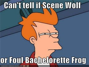 Can't tell if Scene Wolf  or Foul Bachelorette Frog