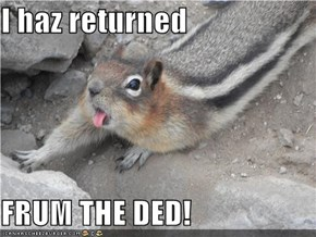 I haz returned  FRUM THE DED!