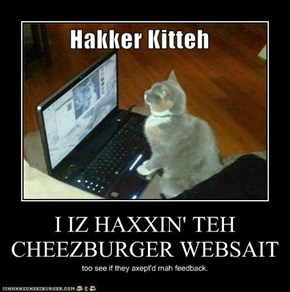 I IZ HAXXIN' TEH CHEEZBURGER WEBSAIT