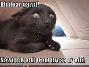 Oh dear gawd!  Nawt teh old prom dress again!