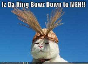 Iz Da King Bowz Down to MEH!!