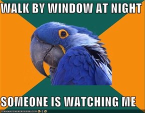 WALK BY WINDOW AT NIGHT  SOMEONE IS WATCHING ME