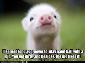 I learned long ago, never to  play paint ball with a pig. You get dirty, and besides, the pig likes it!
