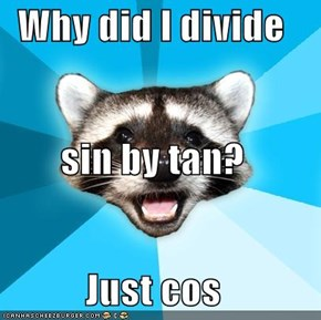 Why did I divide  sin by tan? Just cos