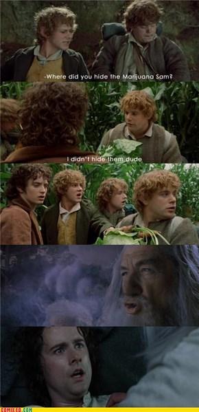 Gandalf Stole the Nugs