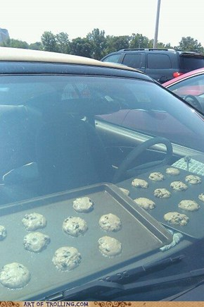 So Hot You Could...Bake Cookies?