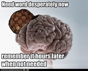 Scumbag Brain is annoying like that.