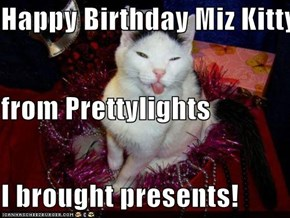 Happy Birthday Miz Kitty from Prettylights  I brought presents!