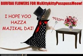 BURFDAI FLOWERS FOR MsKittykittyPusspussMeow!