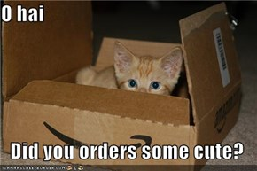 O hai  Did you orders some cute?