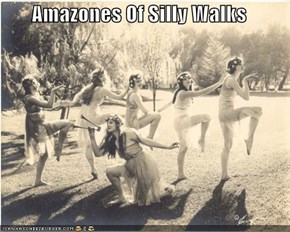 Amazones Of Silly Walks