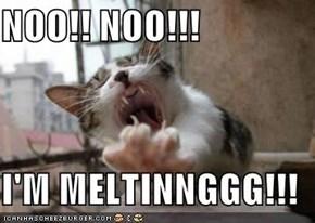 NOO!! NOO!!!  I'M MELTINNGGG!!!