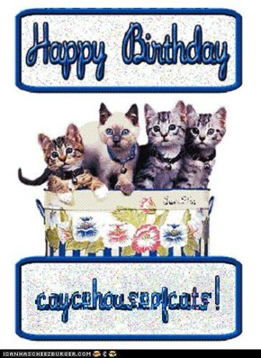 Happy birthday, caycehouseofcats