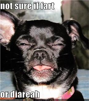 not sure if fart  or diareah