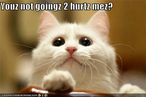 Youz not goingz 2 hurtz mez?