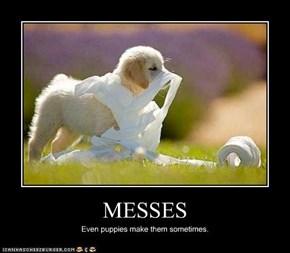MESSES