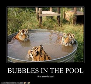BUBBLES IN THE POOL