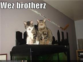 Wez brotherz