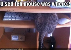 U sed teh mouse was where?