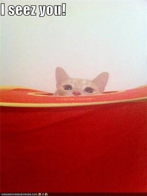 I seez you!