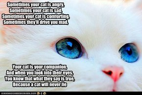A kitteh verse (original composition)