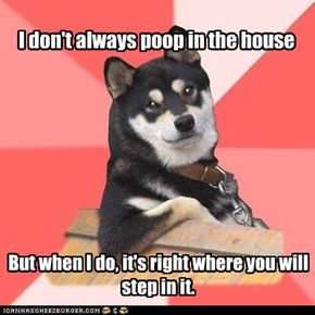 I don't always poop in the house