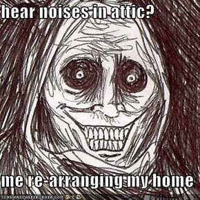 hear noises in attic?  me re-arranging my home