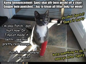 Don't Worry Everyone, Spotz is Fine & In Good Spiritz.  Not Sur Bout Patch Though