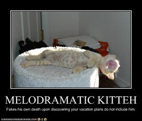 MELODRAMATIC KITTEH