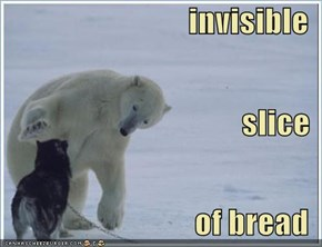 invisible slice of bread