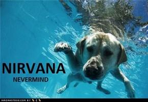 Nevermind.....