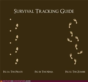 Why Would You Track Those?