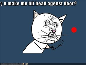 y u make me hit head agenst door?